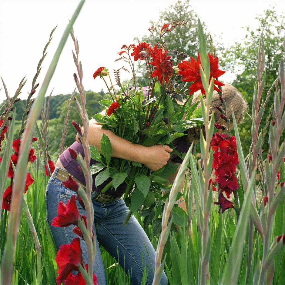 UK - Rural life - Gardening