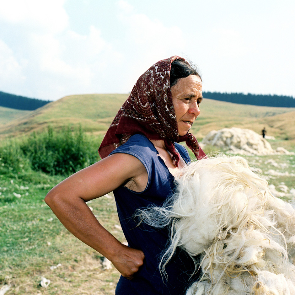 Romania - Carpathian mountains - Woman holding a sheep's fleece after shearing