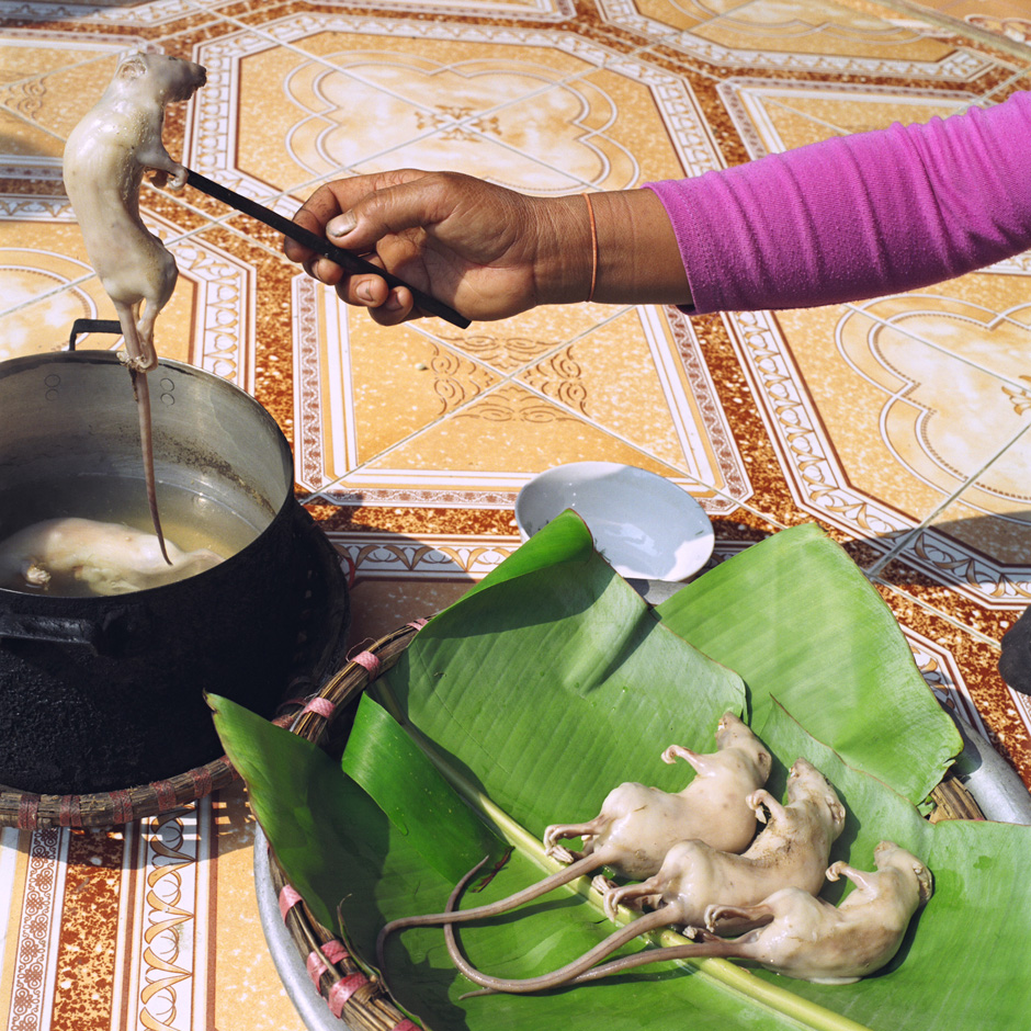 Vietnam - Craft villages - Cooking rats caught in the rice fields around Vinh An a village specialising in catching rats