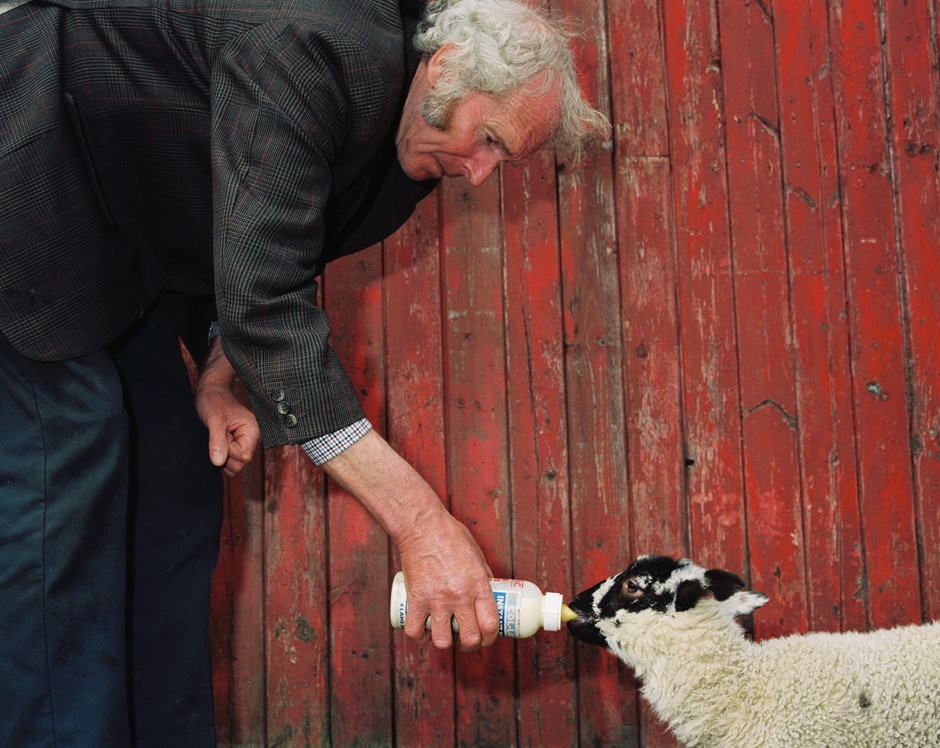 UK - Rural life - A hill farmer feeds a pet lamb in Nidderdale